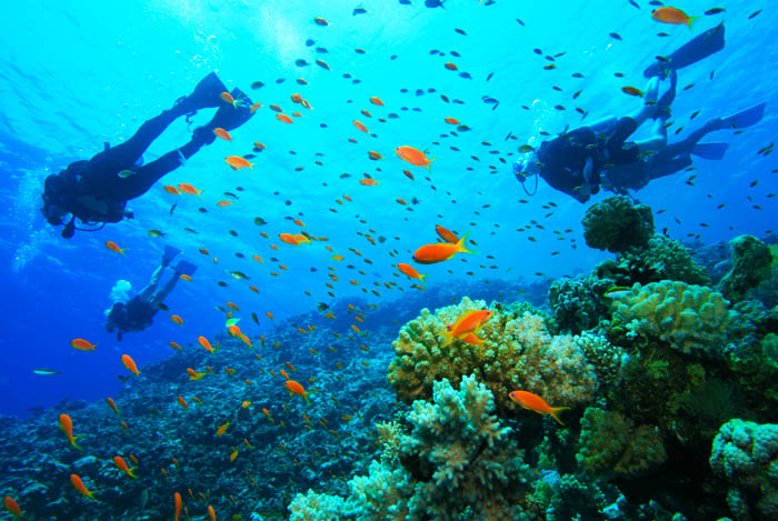 Dive Panama's Pacific Ocean: : Sister Islands on the Bay of Panama