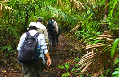 Hiking on Las Cruces trail and to jungle by boat